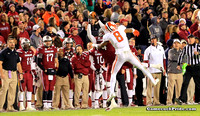 Shag Roland catches a pass during the 2013 Clemson / South Carolina Football Game.